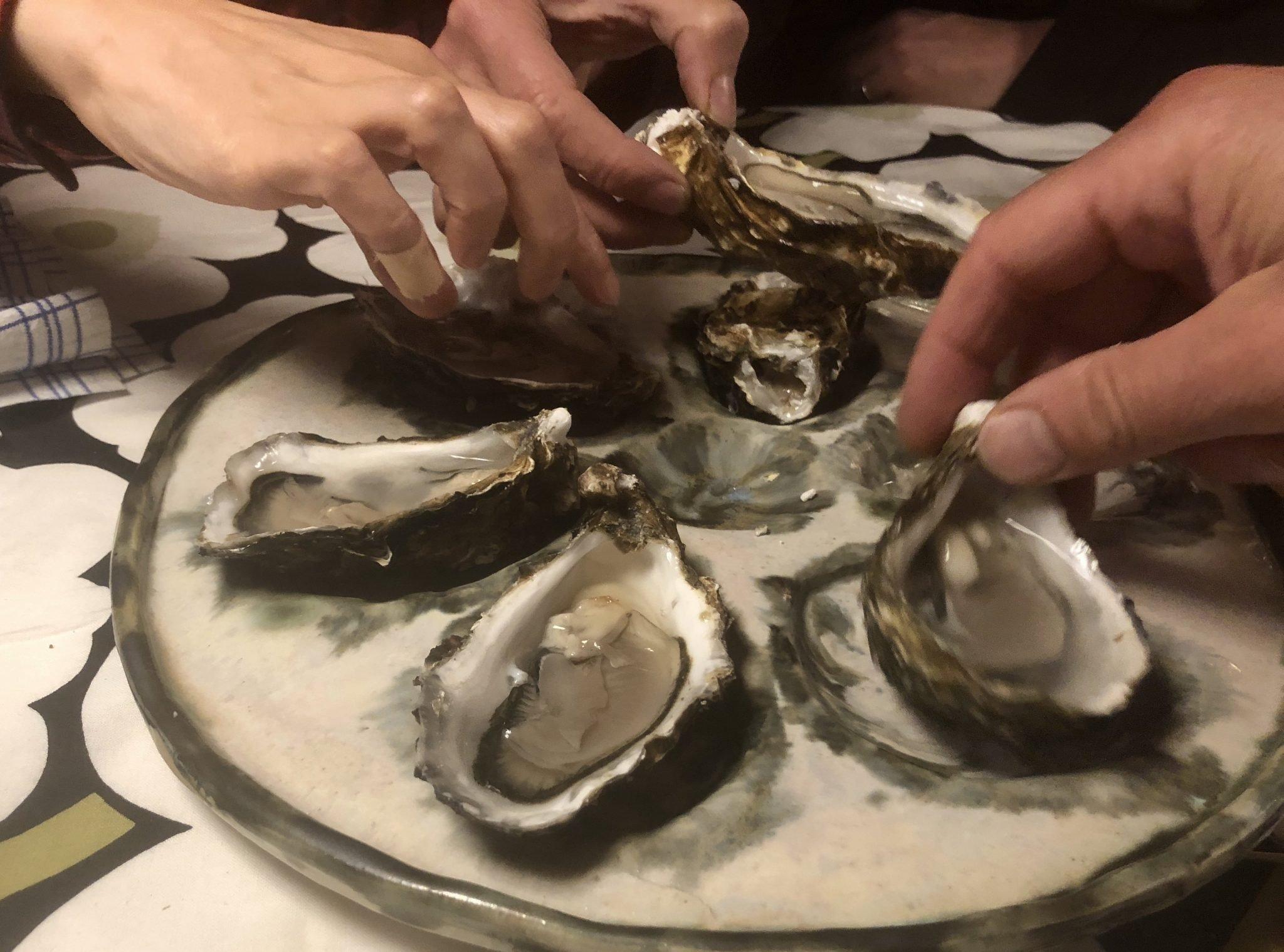 oesterborden judith kayser met picking oysters